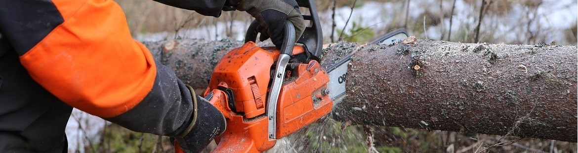 Chainsaws and pruners